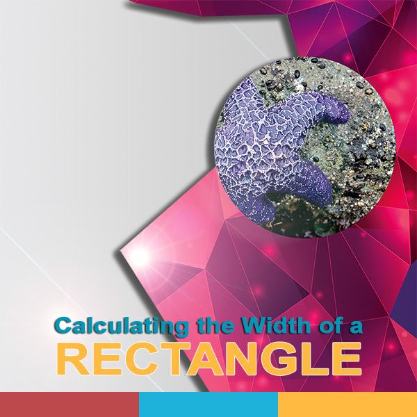 Calculating the Width of a Rectangle